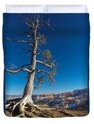 Bryce Tree Duvet Cover