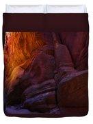 Buckskin Gulch 17 Duvet Cover