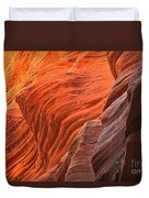 Buckskin Walls Of Fire Duvet Cover