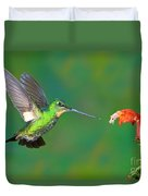 Buff-winged Starfrontlet Duvet Cover