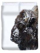 Buffalo   #0164 Duvet Cover