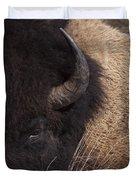 Buffalo   #0921 Duvet Cover