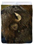 Buffalo   #5601 Duvet Cover