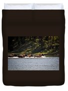 Buffalo Crossing - Yellowstone National Park - Wyoming Duvet Cover