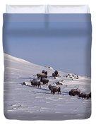 Buffalo Herd In Snow   #6075 Duvet Cover