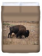 Buffalo Of Antelope Island Iv Duvet Cover