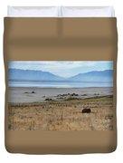 Buffalo Of Antelope Island V Duvet Cover
