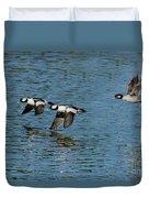 Bufflehead Duck Trio In Flight Duvet Cover