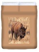 Bull Bison Running In Yellowstone National Park Duvet Cover