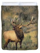 Bull Elk In Rut Bugling Yellowstone Wyoming Wildlife Duvet Cover