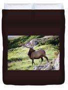 Bull Elk In Velvet Duvet Cover