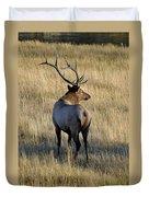 Bull Elk Surveying His Harem Duvet Cover by Bruce Gourley