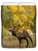 Bull Elk With Autumn Colors Duvet Cover