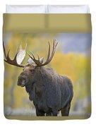 Bull Moose In Autumn Duvet Cover