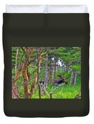 Bull Moose In Cape Breton Highlands Np-ns Duvet Cover