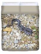 Bull Snake Duvet Cover
