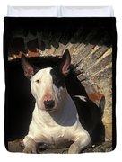 Bull Terrier Dog Duvet Cover