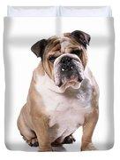 Bulldog Sitting Duvet Cover