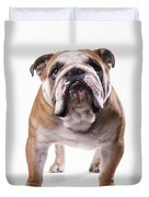 Bulldog Standing, Facing Camera Duvet Cover