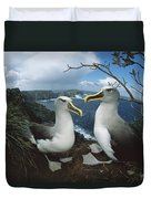 Bullers Albatrosses On Storm-lashed Duvet Cover