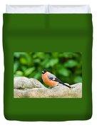 Bullfinch Duvet Cover
