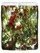 Bumper Crop - Cherries Duvet Cover