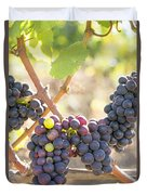 Bunches Of Red Wine Grapes Hanging On Grapevine Duvet Cover