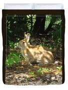 Bunny In The Wild 2 Duvet Cover