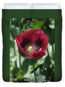 Burgundy Poppy Duvet Cover