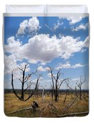 Burned Trees On Colorado Plateau Duvet Cover