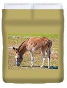 Burro Equus Asinus Duvet Cover