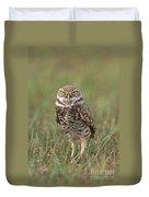 Burrowing Owl Duvet Cover
