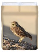 Burrowing Owl II Duvet Cover