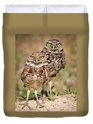 Burrowing Owls Duvet Cover