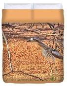 Bush Stone Curlew Duvet Cover