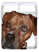 Buster Brown The Boxer Duvet Cover by Sandra Clark