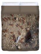 Busy Ants Duvet Cover