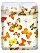 Butterflies Square Duvet Cover