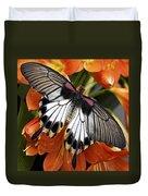 Butterfly 006 Duvet Cover
