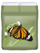 Butterfly 009 Duvet Cover