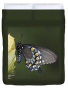 Butterfly 016 Duvet Cover