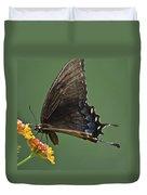 Butterfly 017 Duvet Cover