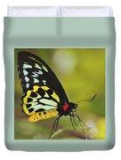 Butterfly 022 Duvet Cover