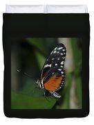 Butterfly 025 Duvet Cover