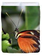 Key West Butterfly 2 Duvet Cover