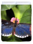 Key West Butterfly 3 Duvet Cover