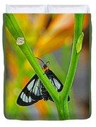 Butterfly An3597-13 Duvet Cover