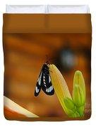 Butterfly An3606-13 Duvet Cover