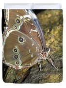Butterfly At Night Duvet Cover