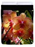 Butterfly Orchids Duvet Cover